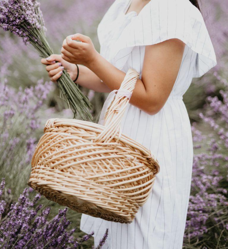 Durch ein Coaching für Mamas in München zu mehr Leichtigkeit finden. Eine Frau pflückt Lavendel.